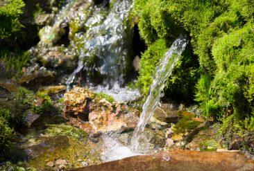 Permagold Projekt Bio-Wasser