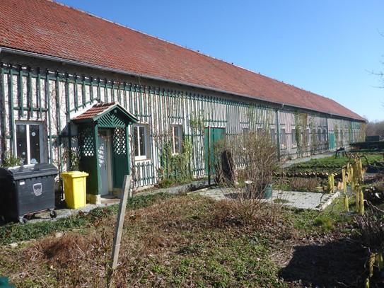 Der Bauerngarten: Ein sonniger Platz für Vielfalt.